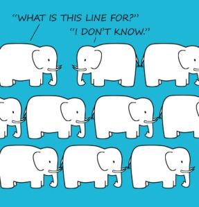 elephant_lineup