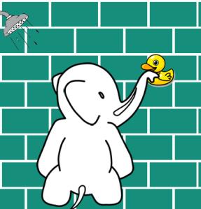 elephant_shower